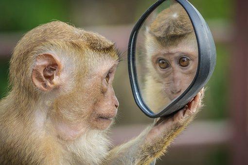 Spiegeltje, spiegeltje…